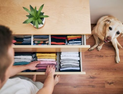 Summer cleaning tips for your home